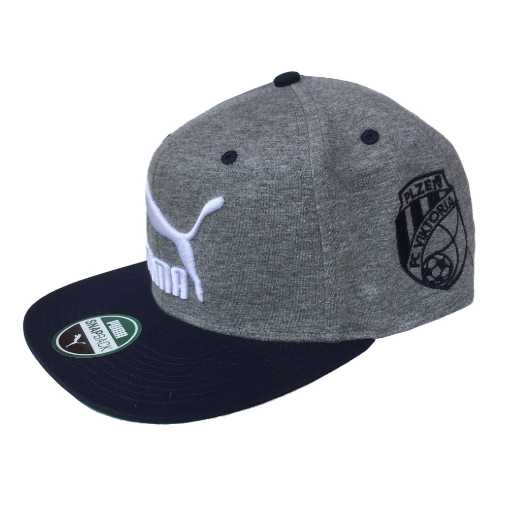 Kšiltovka (rovný kšilt) - LS ColourBlock SnapBack Medium Gray Heat